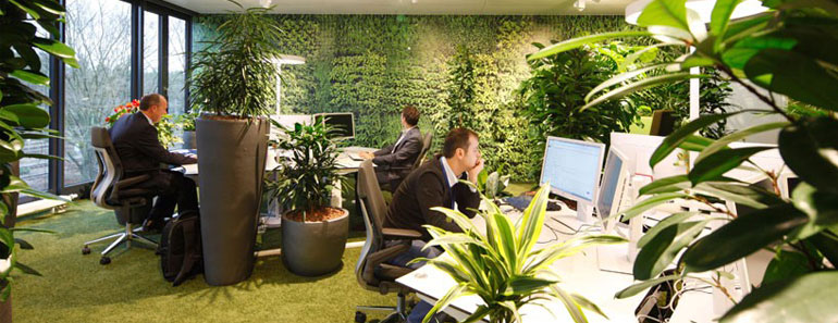 How A Green Office Design Can Transform Your Business