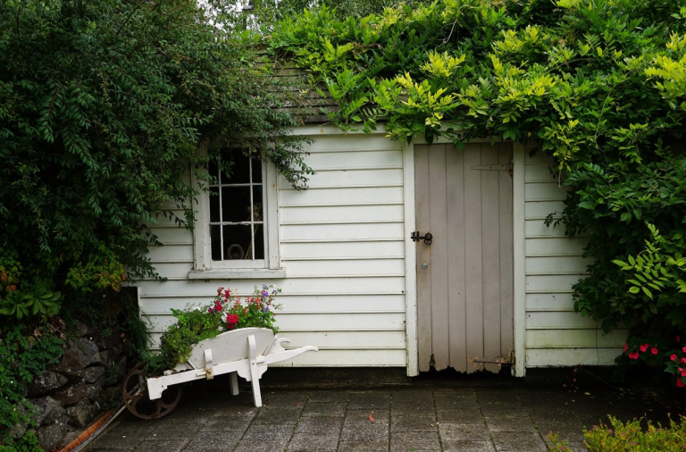 Your Essential Guide to Cleaning and Clearing Out Your Cluttered Garden Shed
