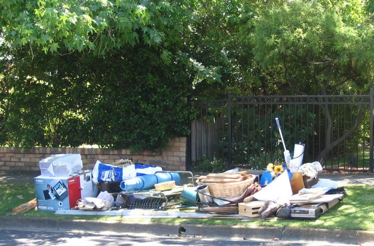 Backyard Rubbish Collection: How can professionals help you?